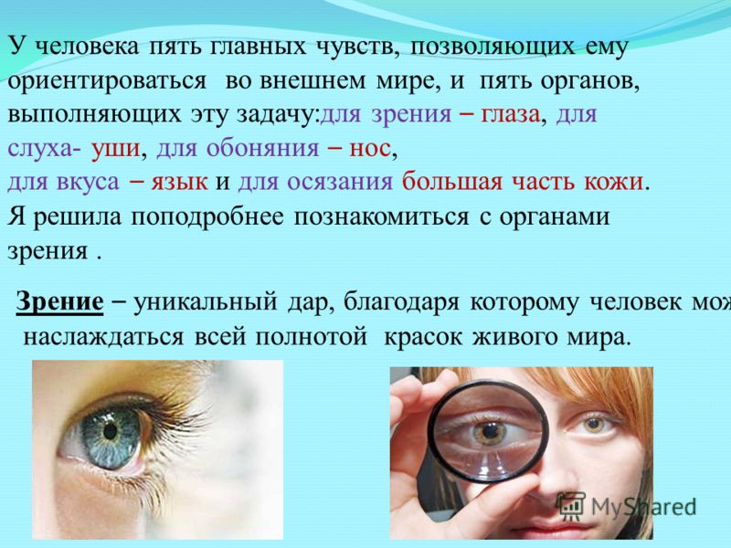Зрение – уникальный дар, благодаря которому человек может наслаждаться всей полнотой красок живого мира. У человека пять главных чувств, позволяющих ему ориентироваться во внешнем мире, и пять органов, выполняющих эту задачу:для зрения – глаза, для с