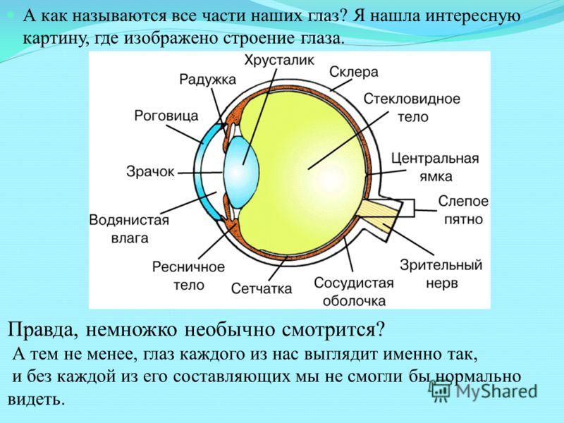 Как улучшить зрение  takprostocc