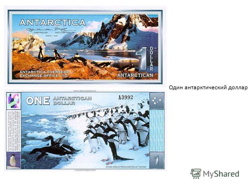 Один антарктический доллар