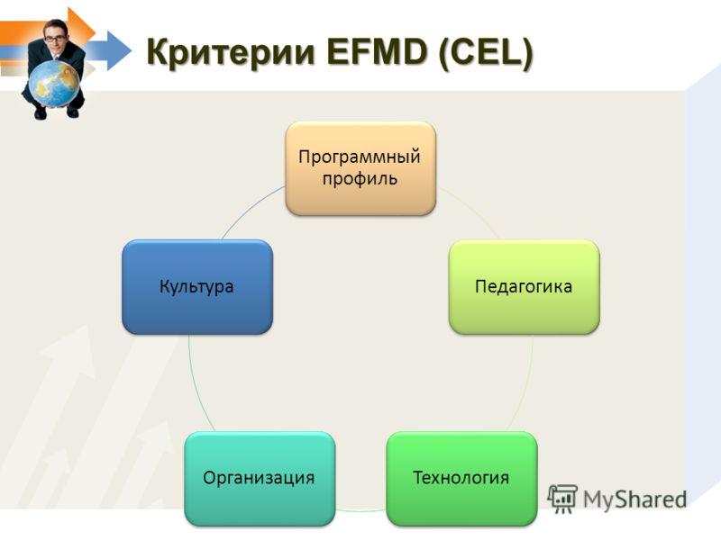 Критерии EFMD (CEL) Программный профиль ПедагогикаТехнологияОрганизацияКультура