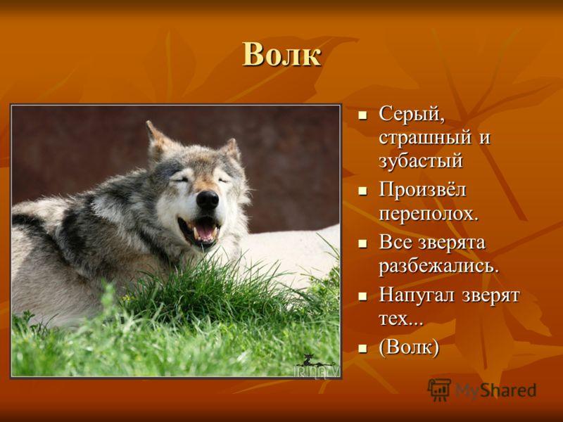 Волк Серый, страшный и зубастый Серый, страшный и зубастый Произвёл переполох. Произвёл переполох. Все зверята разбежались. Все зверята разбежались. Напугал зверят тех... Напугал зверят тех... (Волк) (Волк)