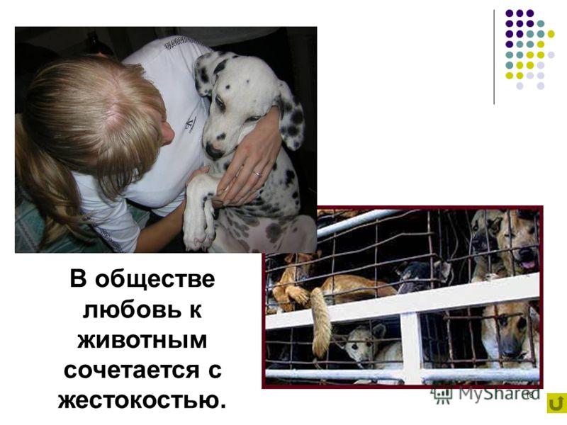 18 В обществе любовь к животным сочетается с жестокостью.