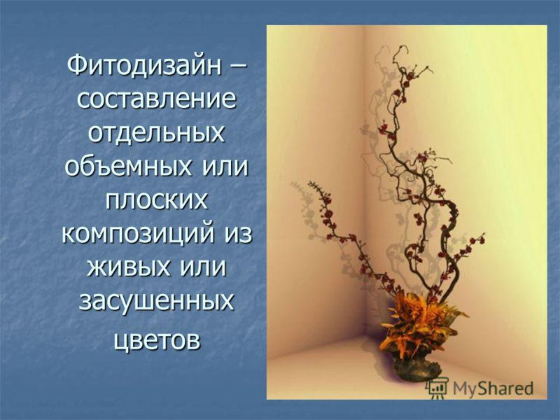 Фитодизайн – составление отдельных объемных или плоских композиций из живых или засушенных цветов
