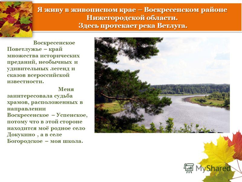 Я живу в живописном крае – Воскресенском районе Нижегородской области. Здесь протекает река Ветлуга. Воскресенское Поветлужье – край множества исторических преданий, необычных и удивительных легенд и сказов всероссийской известности. Меня заинтересов