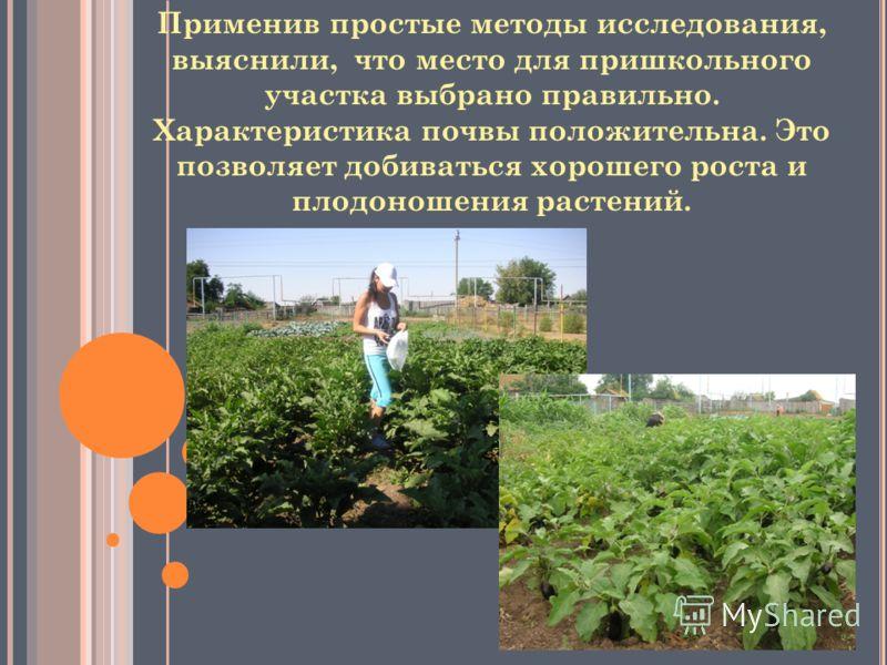 Применив простые методы исследования, выяснили, что место для пришкольного участка выбрано правильно. Характеристика почвы положительна. Это позволяет добиваться хорошего роста и плодоношения растений.