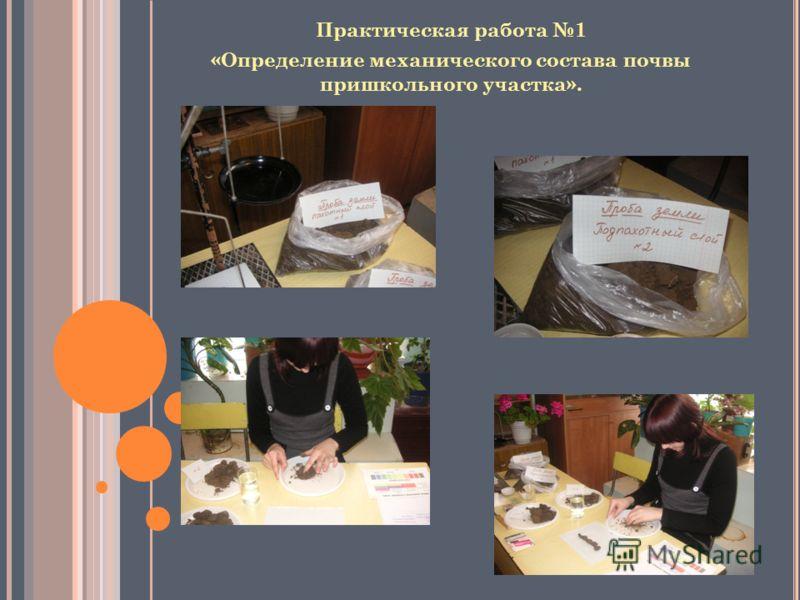 Практическая работа 1 «Определение механического состава почвы пришкольного участка».