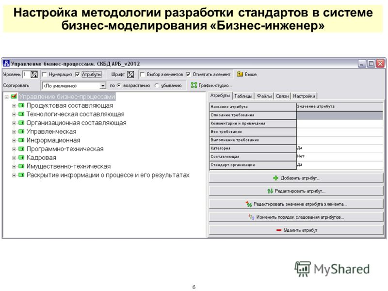 Настройка методологии разработки стандартов в системе бизнес-моделирования «Бизнес-инженер» 6