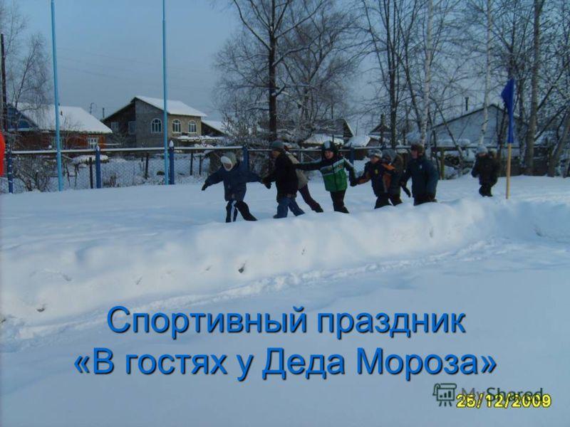 Спортивный праздник «В гостях у Деда Мороза»
