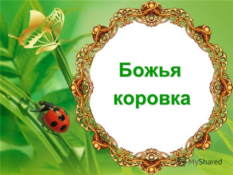 Божья Коровка Книга Жизни.Rar
