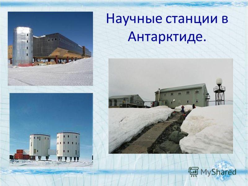 Научные станции в Антарктиде.