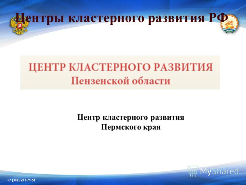 +7 (347) 273-71-51 Центры кластерного развития РФ Центр кластерного развития Пермского края