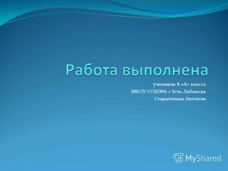 учеником 8 «А» класса МБОУ СОШ6 г Усть-Лабинска Старыгиным Антоном