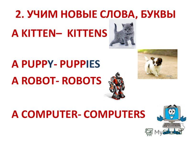 2. УЧИМ НОВЫЕ СЛОВА, БУКВЫ A KITTEN– KITTENS A PUPPY- PUPPIES A ROBOT- ROBOTS A COMPUTER- COMPUTERS