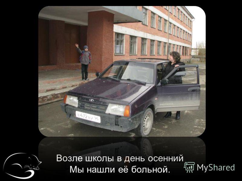 Возле школы в день осенний Мы нашли её больной.