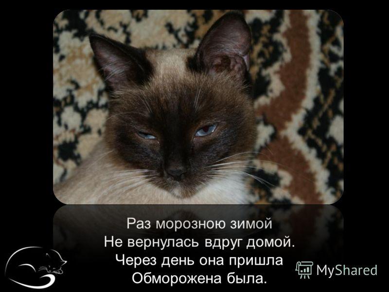 Раз морозною зимой Не вернулась вдруг домой. Через день она пришла Обморожена была.