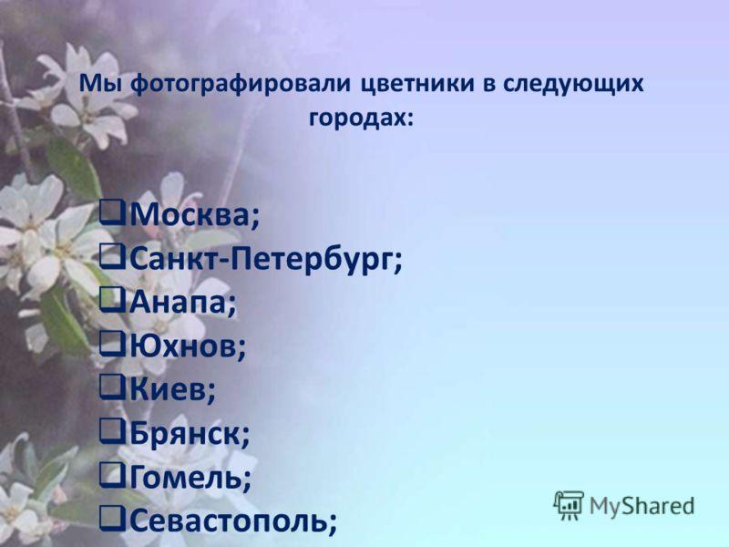 Мы фотографировали цветники в следующих городах: Москва; Санкт-Петербург; Анапа; Юхнов; Киев; Брянск; Гомель; Севастополь;