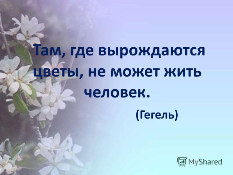 Там, где вырождаются цветы, не может жить человек. (Гегель)