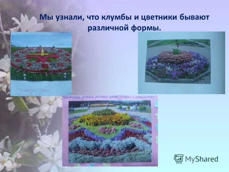 Мы узнали, что клумбы и цветники бывают различной формы.