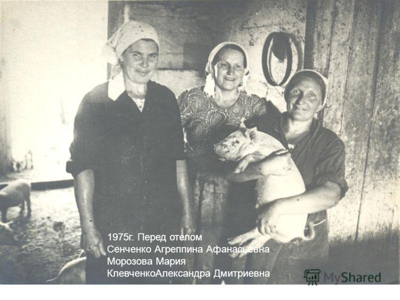 1975г. Перед отелом Сенченко Агреппина Афанасьевна Морозова Мария КлевченкоАлександра Дмитриевна