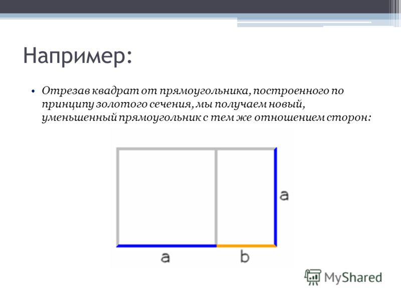Отрезав квадрат от прямоугольника, построенного по принципу золотого сечения, мы получаем новый, уменьшенный прямоугольник с тем же отношением сторон: Например: