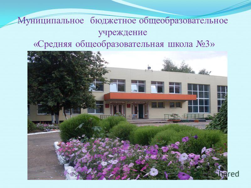 Муниципальное бюджетное общеобразовательное учреждение «Средняя общеобразовательная школа 3»