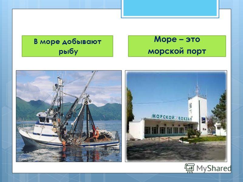 В море добывают рыбу Море – это морской порт