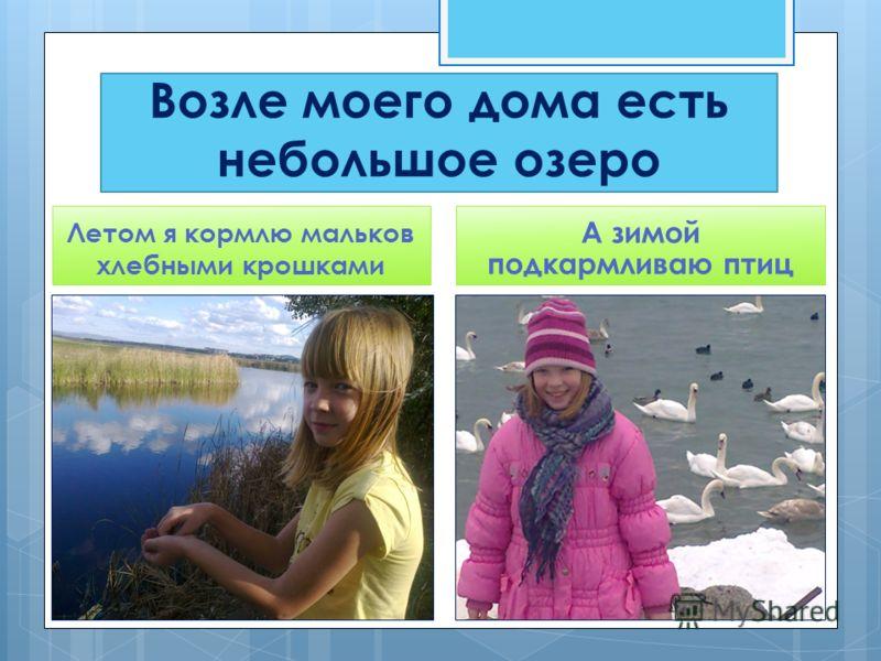 Возле моего дома есть небольшое озеро Летом я кормлю мальков хлебными крошками А зимой подкармливаю птиц