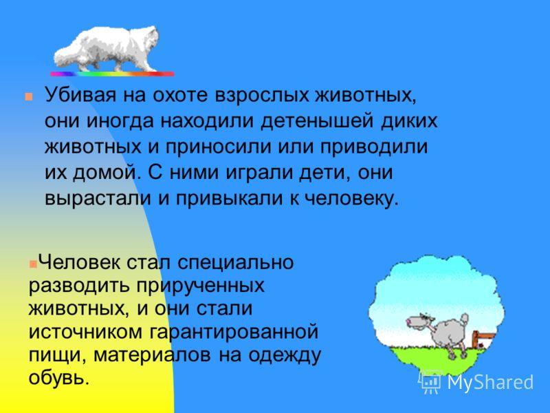 Убивая на охоте взрослых животных, они иногда находили детенышей диких животных и приносили или приводили их домой. С ними играли дети, они вырастали