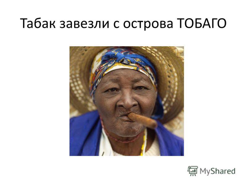 Табак завезли с острова ТОБАГО