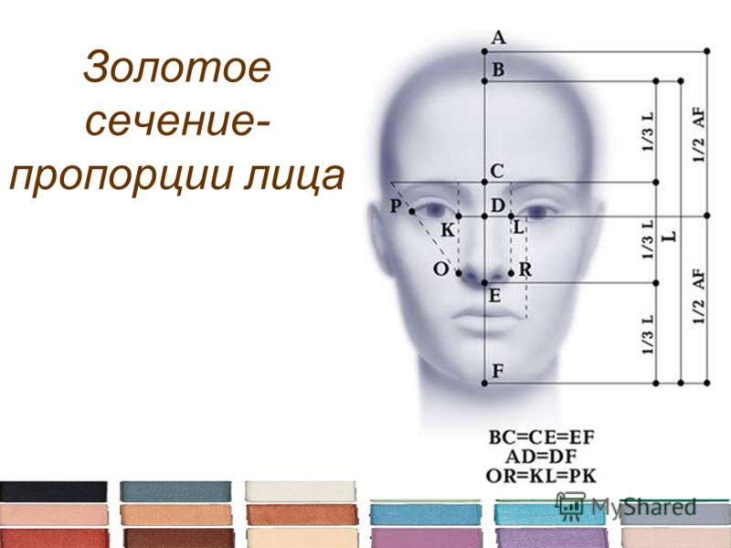 Золотое сечение- пропорции лица