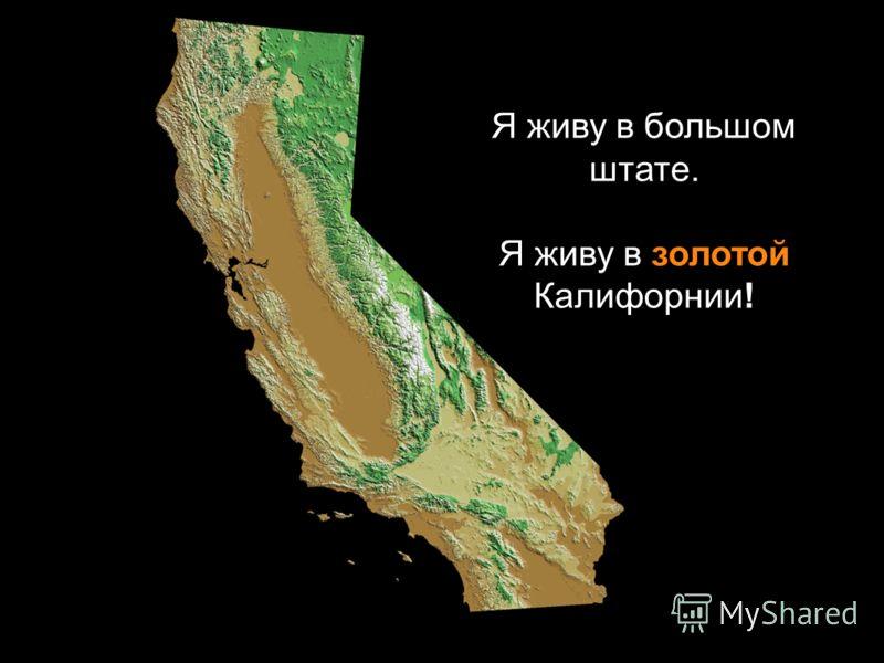 Я живу в большом штате. Я живу в золотой Калифорнии!