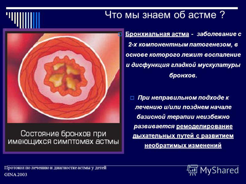 Что мы знаем об астме ? Протокол по лечению и диагностке астмы у детей GINA 2003 Бронхиальная астма - заболевание с 2-х компонентным патогенезом, в основе которого лежит воспаление и дисфункция гладкой мускулатуры бронхов. При неправильном подходе к