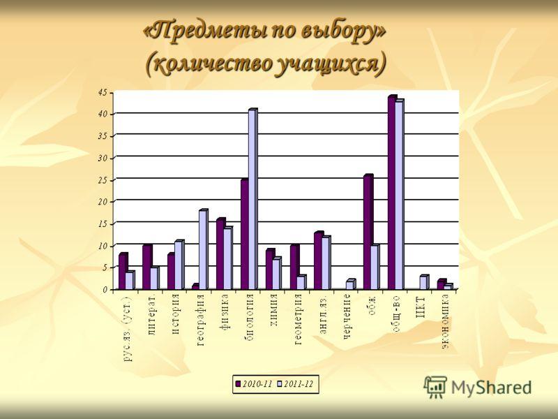 «Предметы по выбору» (количество учащихся)