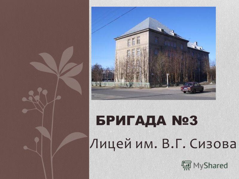 Лицей им. В.Г. Сизова БРИГАДА 3