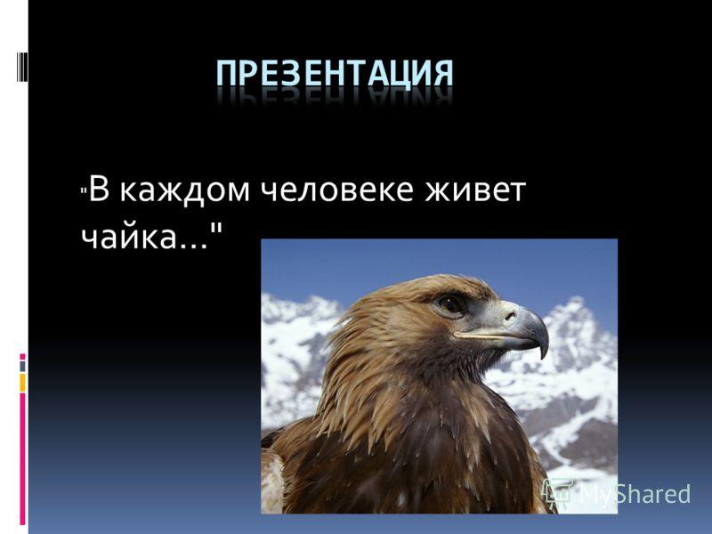 В каждом человеке живет чайка...