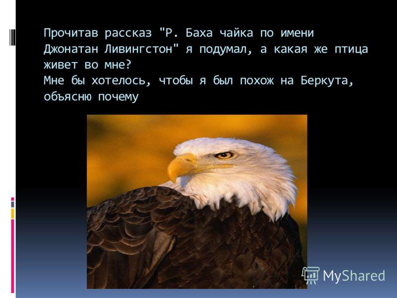 Прочитав рассказ Р. Баха чайка по имени Джонатан Ливингстон я подумал, а какая же птица живет во мне? Мне бы хотелось, чтобы я был похож на Беркута, объясню почему