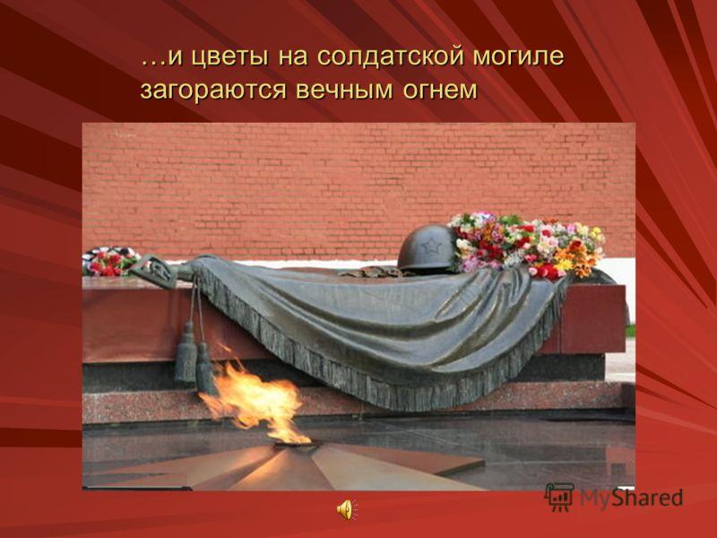 …и цветы на солдатской могиле загораются вечным огнем