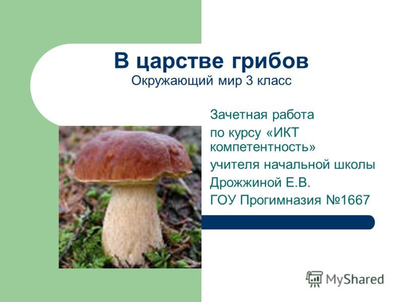 Сообщение о грибах окружающий мир 3 класс