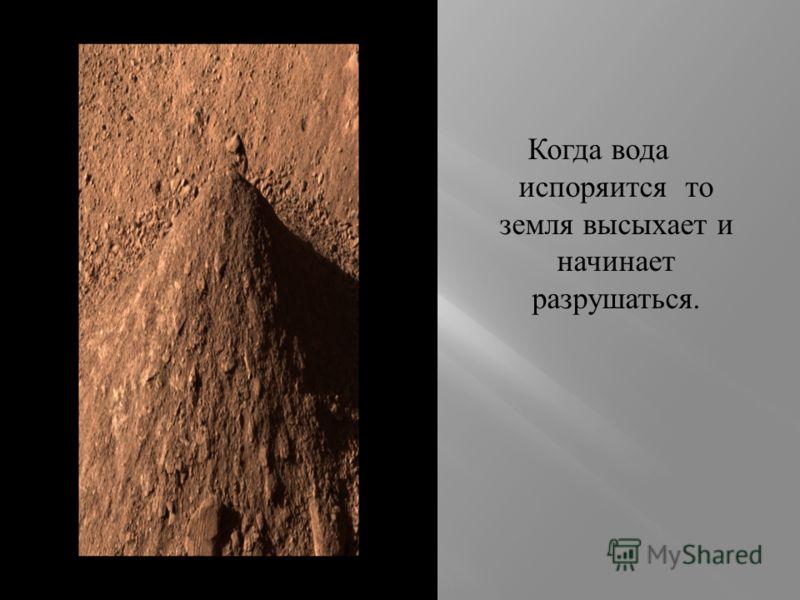 Чернозём- это самый плодородный вид почвы.