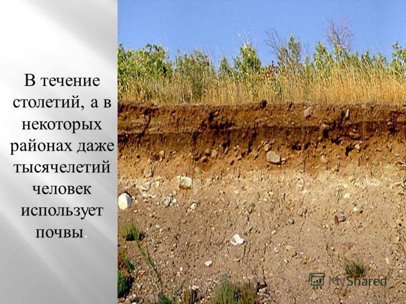 Земля всегда занимала главенствующее место среди национальных богатство.