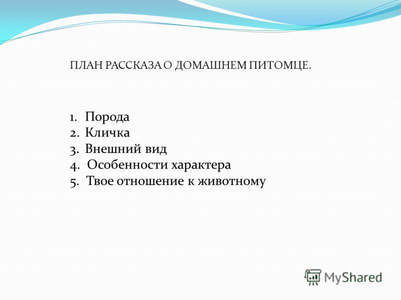 ПЛАН РАССКАЗА О ДОМАШНЕМ ПИТОМЦЕ. 1.Порода 2.Кличка 3.Внешний вид 4. Особенности характера 5. Твое отношение к животному