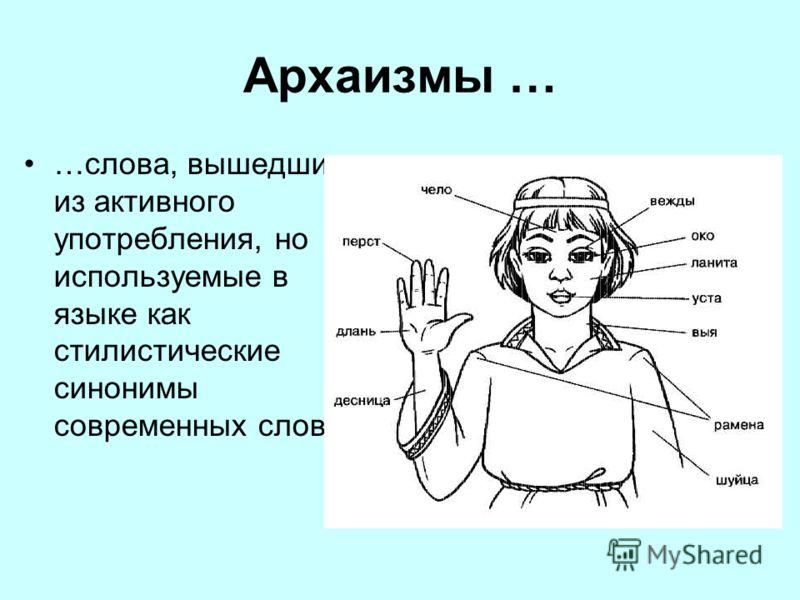 Архаизмы … …слова, вышедшие из активного употребления, но используемые в языке как стилистические синонимы современных слов.