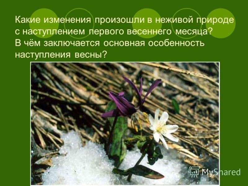 Какие изменения произошли в неживой природе с наступлением первого весеннего месяца? В чём заключается основная особенность наступления весны?