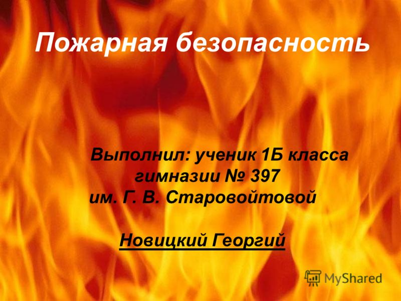 Пожарная безопасность Выполнил: ученик 1Б класса гимназии 397 им. Г. В. Старовойтовой Новицкий Георгий
