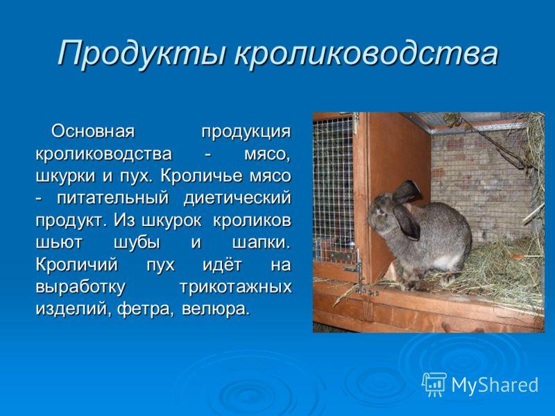 Продукты кролиководства Основная продукция кролиководства - мясо, шкурки и пух. Кроличье мясо - питательный диетический продукт. Из шкурок кроликов шьют шубы и шапки. Кроличий пух идёт на выработку трикотажных изделий, фетра, велюра. Основная продукц
