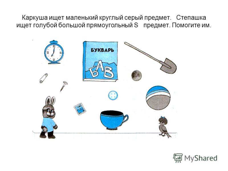 Каркуша ищет маленький круглый серый предмет. Степашка ищет голубой большой прямоугольный S предмет. Помогите им.