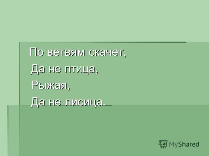 По ветвям скачет, По ветвям скачет, Да не птица, Да не птица, Рыжая, Рыжая, Да не лисица. Да не лисица.