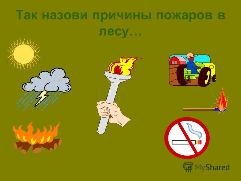 Так назови причины пожаров в лесу…