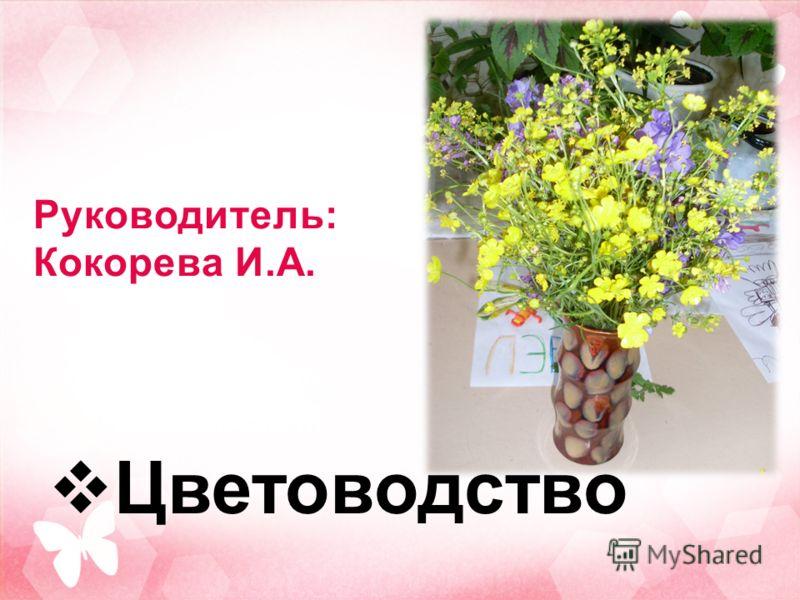 Руководитель: Кокорева И.А. Цветоводство
