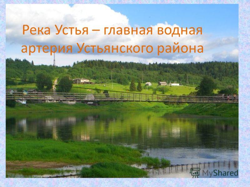 Река Устья – главная водная артерия Устьянского района